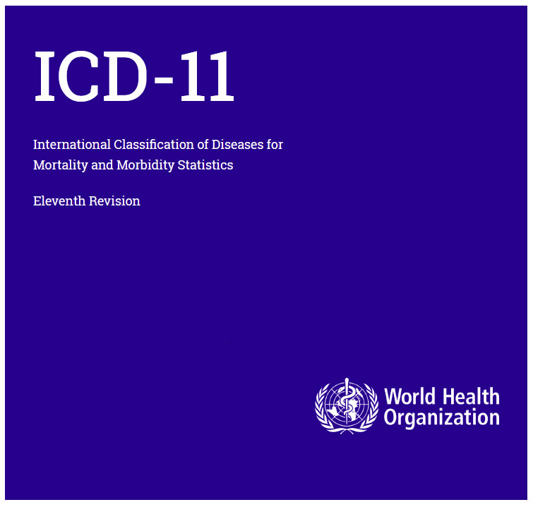Preparing For The Implementation Of Icd